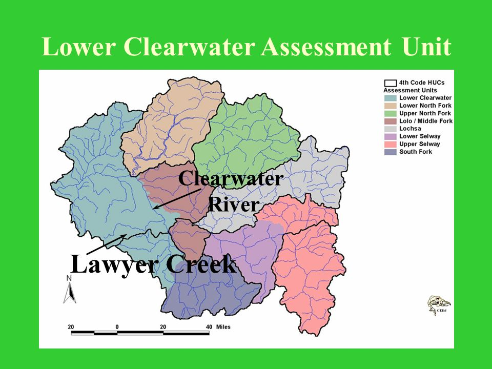 Lower Clearwater Assessment Unit Clearwater River Lawyer Creek
