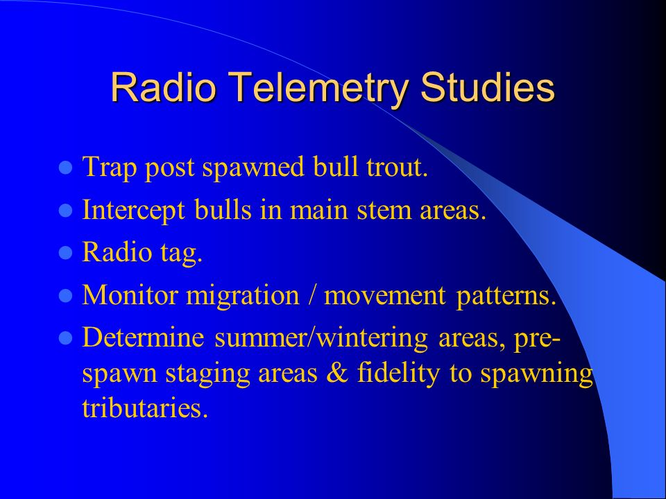 Radio Telemetry Studies Trap post spawned bull trout.