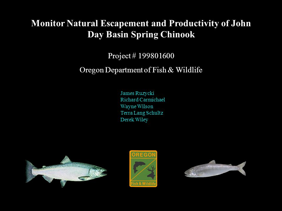 Monitor Natural Escapement and Productivity of John Day Basin Spring Chinook Project # 199801600 Oregon Department of Fish & Wildlife James Ruzycki Richard Carmichael Wayne Wilson Terra Lang Schultz Derek Wiley
