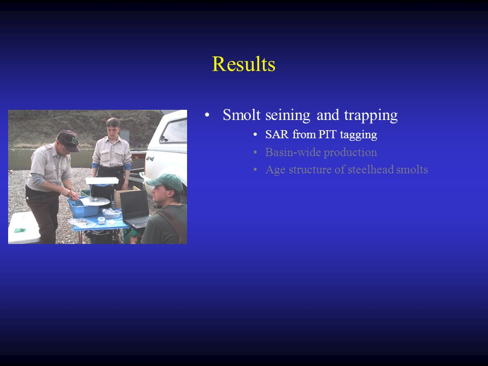 Results Smolt seining and trapping SAR from PIT tagging Basin-wide production Age structure of steelhead smolts