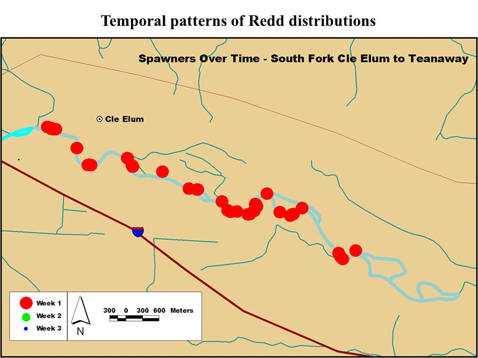 Temporal patterns of Redd distributions