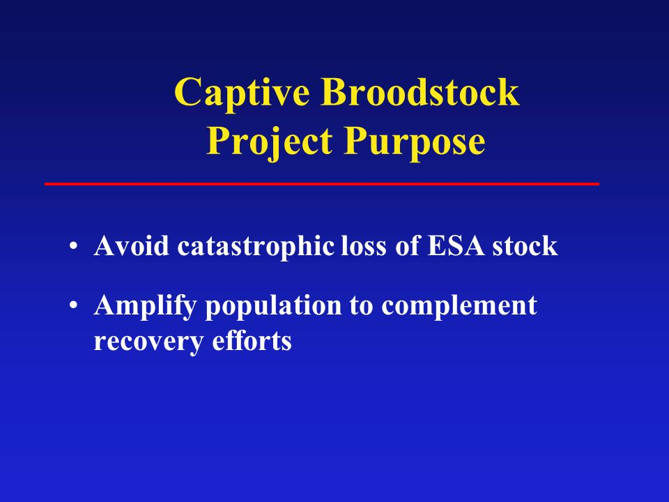 Captive Broodstock Project Purpose Avoid catastrophic loss of ESA stock Amplify population to complement recovery efforts