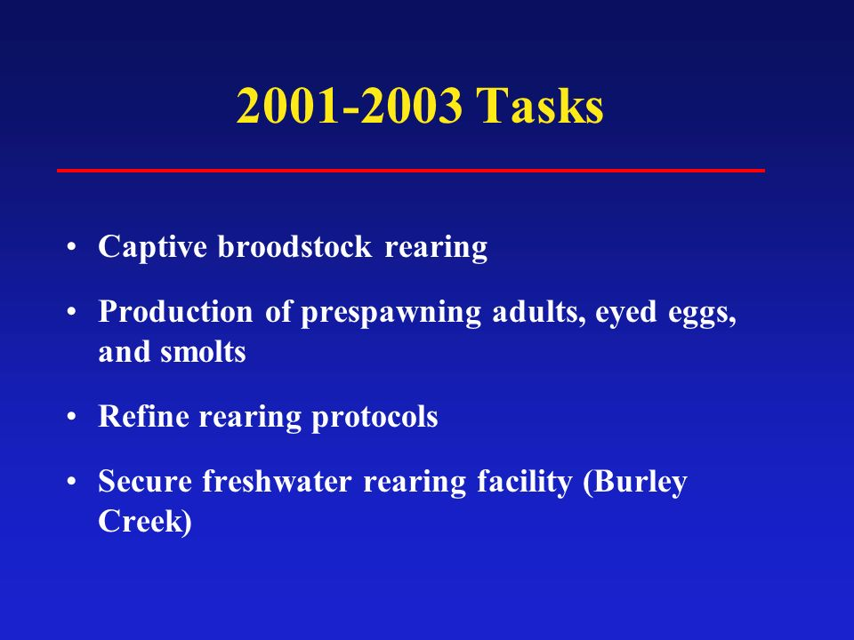2001-2003 Tasks Captive broodstock rearing Production of prespawning adults, eyed eggs, and smolts Refine rearing protocols Secure freshwater rearing facility (Burley Creek)