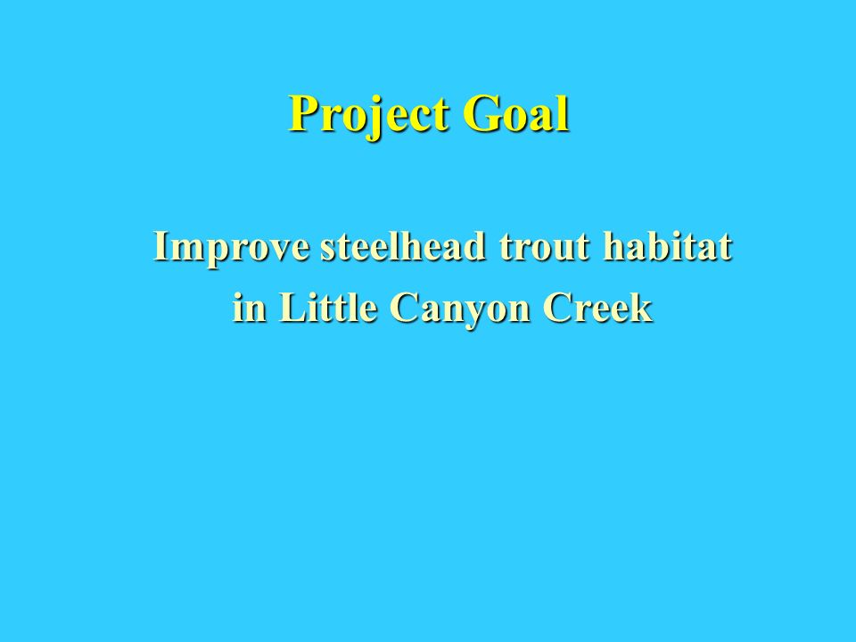 Project Goal Improve steelhead trout habitat in Little Canyon Creek