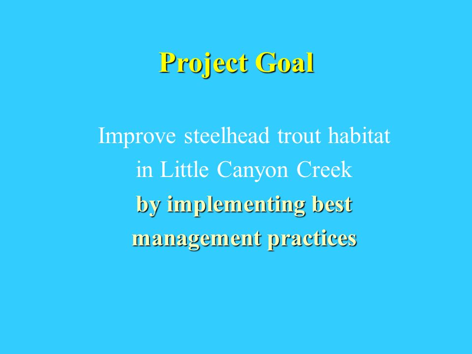 Project Goal Improve steelhead trout habitat in Little Canyon Creek by implementing best management practices