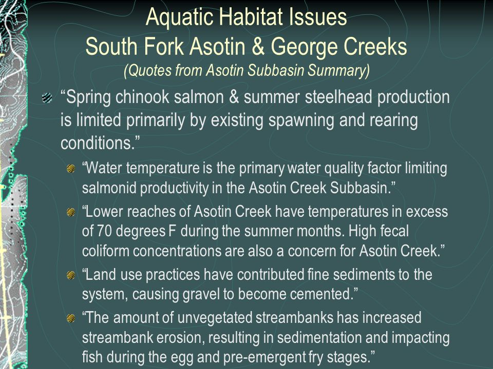 Aquatic Habitat Issues South Fork Asotin & George Creeks (Quotes from Asotin Subbasin Summary) Spring chinook salmon & summer steelhead production is limited primarily by existing spawning and rearing conditions.