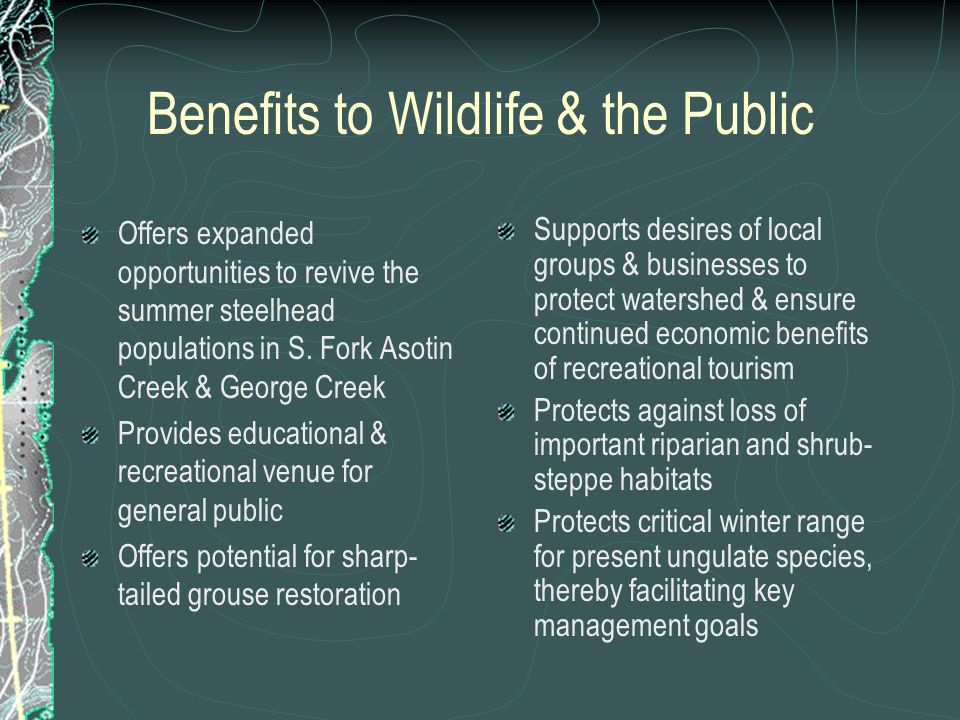 Benefits to Wildlife & the Public Offers expanded opportunities to revive the summer steelhead populations in S.