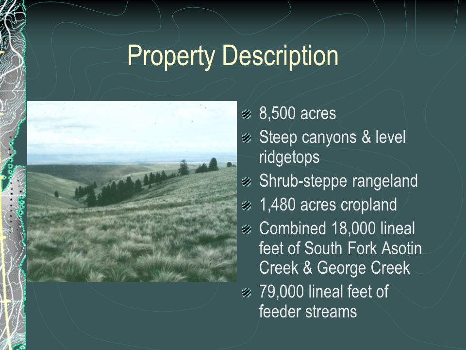 Property Description 8,500 acres Steep canyons & level ridgetops Shrub-steppe rangeland 1,480 acres cropland Combined 18,000 lineal feet of South Fork Asotin Creek & George Creek 79,000 lineal feet of feeder streams
