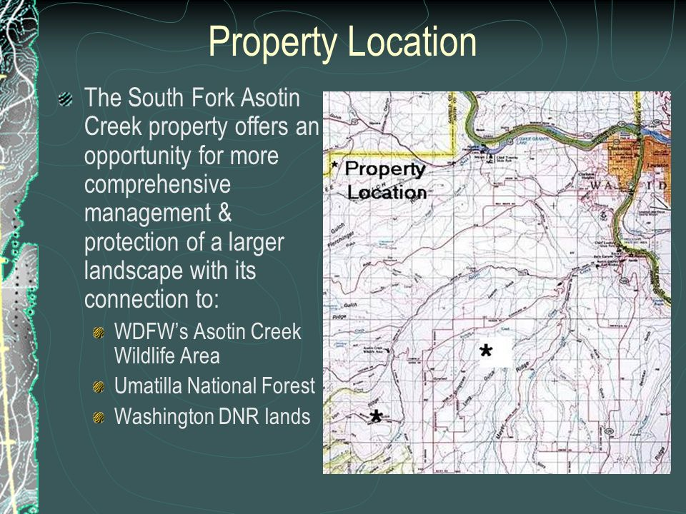 Property Location The South Fork Asotin Creek property offers an opportunity for more comprehensive management & protection of a larger landscape with its connection to: WDFWs Asotin Creek Wildlife Area Umatilla National Forest Washington DNR lands
