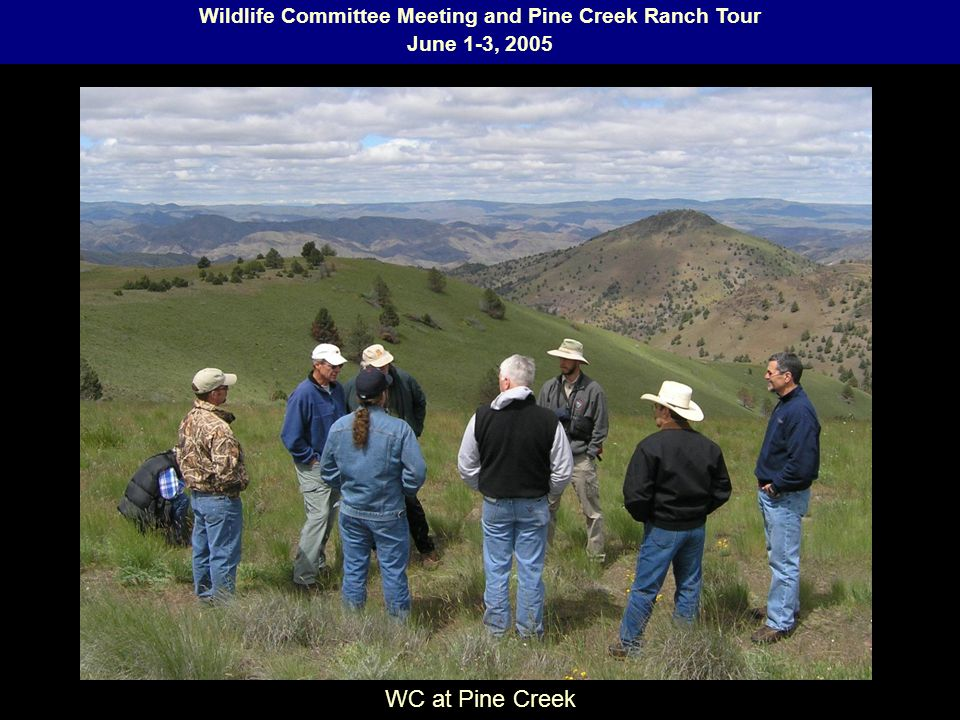 Wildlife Committee Meeting and Pine Creek Ranch Tour June 1-3, 2005 WC at Pine Creek