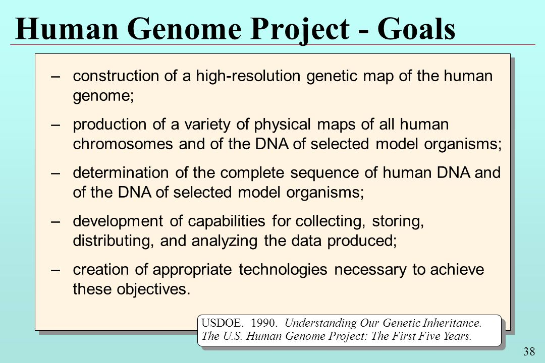 38 Human Genome Project - Goals –construction of a high-resolution genetic map of the human genome; –production of a variety of physical maps of all human chromosomes and of the DNA of selected model organisms; –determination of the complete sequence of human DNA and of the DNA of selected model organisms; –development of capabilities for collecting, storing, distributing, and analyzing the data produced; –creation of appropriate technologies necessary to achieve these objectives.