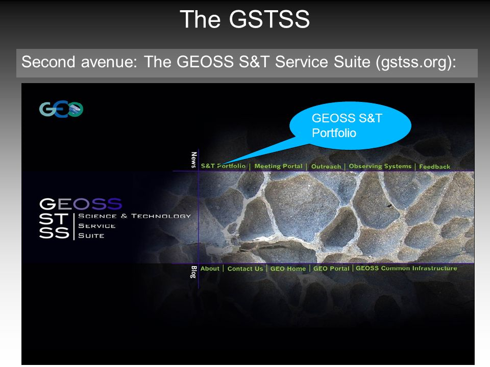 The GSTSS Second avenue: The GEOSS S&T Service Suite (gstss.org): GEOSS S&T Portfolio