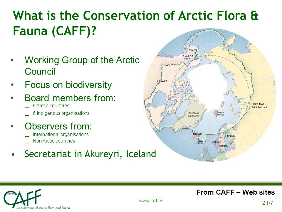 21/7 www.caff.is What is the Conservation of Arctic Flora & Fauna (CAFF).