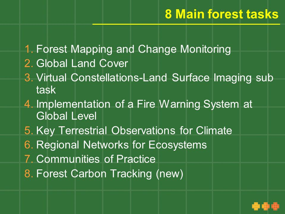 8 Main forest tasks 1.Forest Mapping and Change Monitoring 2.Global Land Cover 3.Virtual Constellations-Land Surface Imaging sub task 4.Implementation of a Fire Warning System at Global Level 5.Key Terrestrial Observations for Climate 6.Regional Networks for Ecosystems 7.Communities of Practice 8.Forest Carbon Tracking (new)