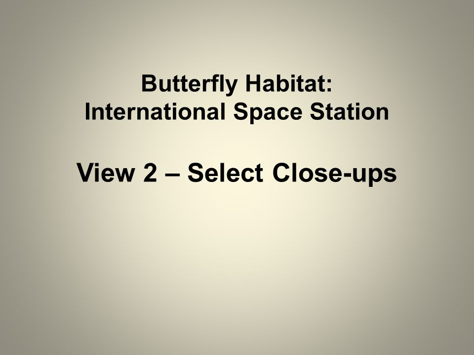 Butterfly Habitat: International Space Station View 2 – Select Close-ups