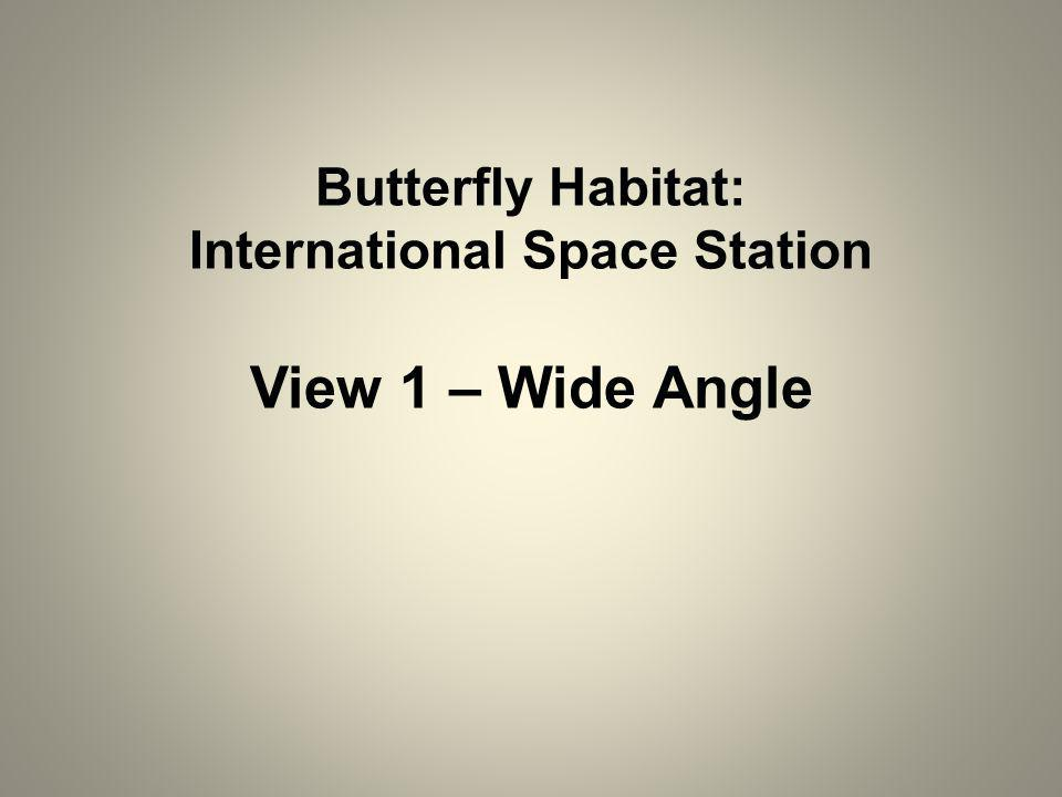 Butterfly Habitat: International Space Station View 1 – Wide Angle