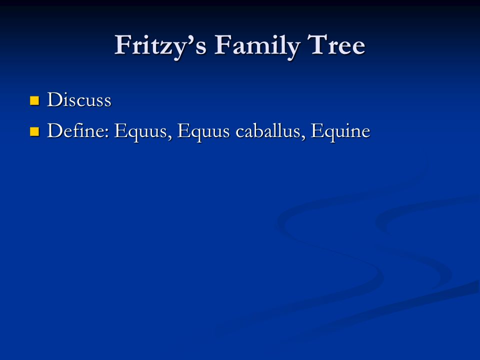 Fritzys Family Tree Discuss Discuss Define: Equus, Equus caballus, Equine Define: Equus, Equus caballus, Equine
