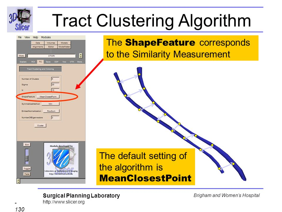 Surgical Planning Laboratory http://www.slicer.org - 130 - Brigham and Womens Hospital Tract Clustering Algorithm The ShapeFeature corresponds to the Similarity Measurement The default setting of the algorithm is MeanClosestPoint