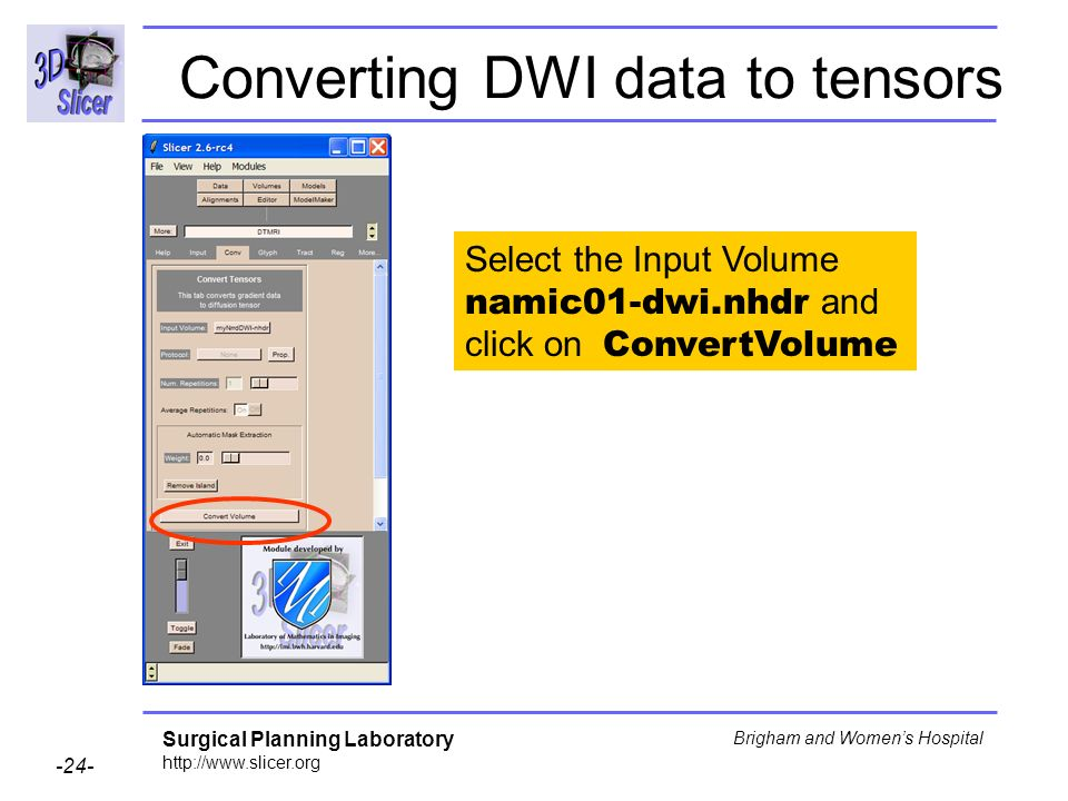 Surgical Planning Laboratory http://www.slicer.org -24- Brigham and Womens Hospital Converting DWI data to tensors Select the Input Volume namic01-dwi.nhdr and click on ConvertVolume