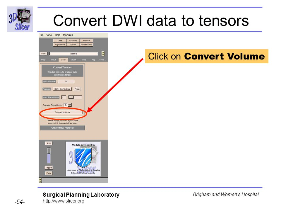 Surgical Planning Laboratory http://www.slicer.org -54- Brigham and Womens Hospital Convert DWI data to tensors Click on Convert Volume