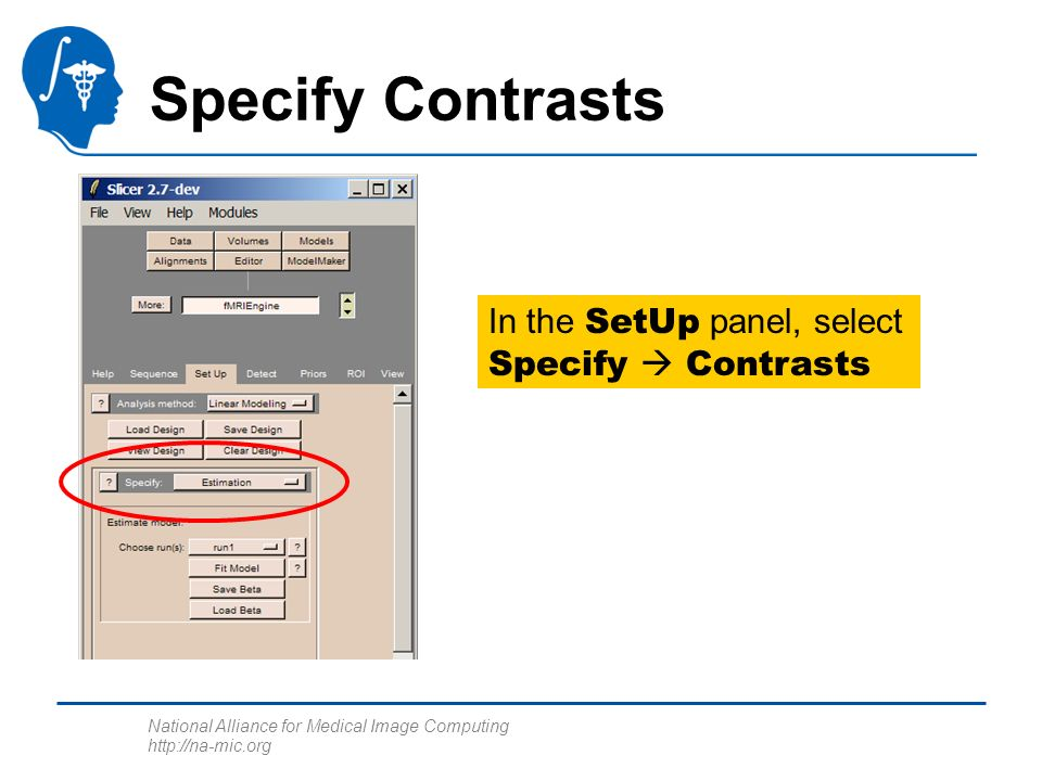 National Alliance for Medical Image Computing http://na-mic.org Specify Contrasts In the SetUp panel, select Specify Contrasts