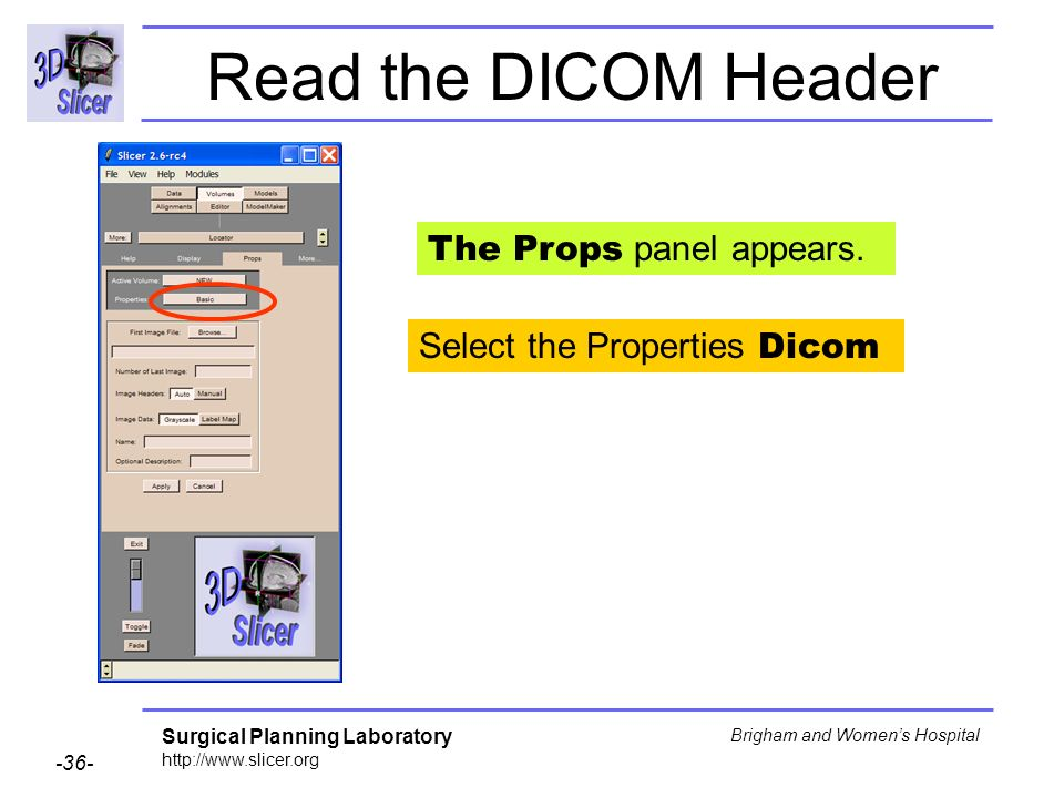 Surgical Planning Laboratory http://www.slicer.org -36- Brigham and Womens Hospital Select the Properties Dicom The Props panel appears.