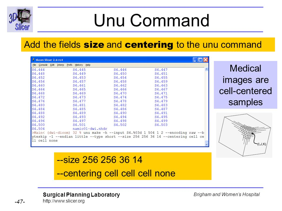 Surgical Planning Laboratory http://www.slicer.org -47- Brigham and Womens Hospital Unu Command --size 256 256 36 14 --centering cell cell cell none Medical images are cell-centered samples Add the fields size and centering to the unu command