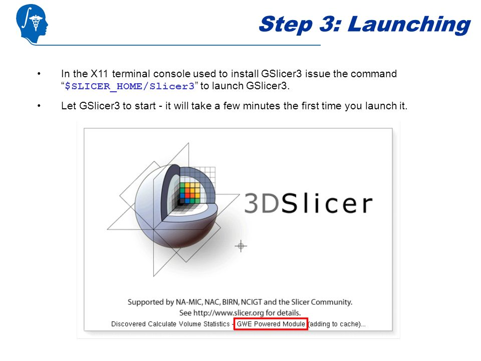Step 3: Launching In the X11 terminal console used to install GSlicer3 issue the command $SLICER_HOME/Slicer3 to launch GSlicer3.