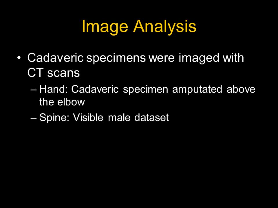 Image Analysis Cadaveric specimens were imaged with CT scans –Hand: Cadaveric specimen amputated above the elbow –Spine: Visible male dataset
