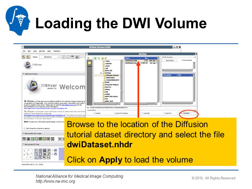 National Alliance for Medical Image Computing http://www.na-mic.org Loading the DWI Volume Browse to the location of the Diffusion tutorial dataset directory and select the file dwiDataset.nhdr Click on Apply to load the volume © 2010, All Rights Reserved