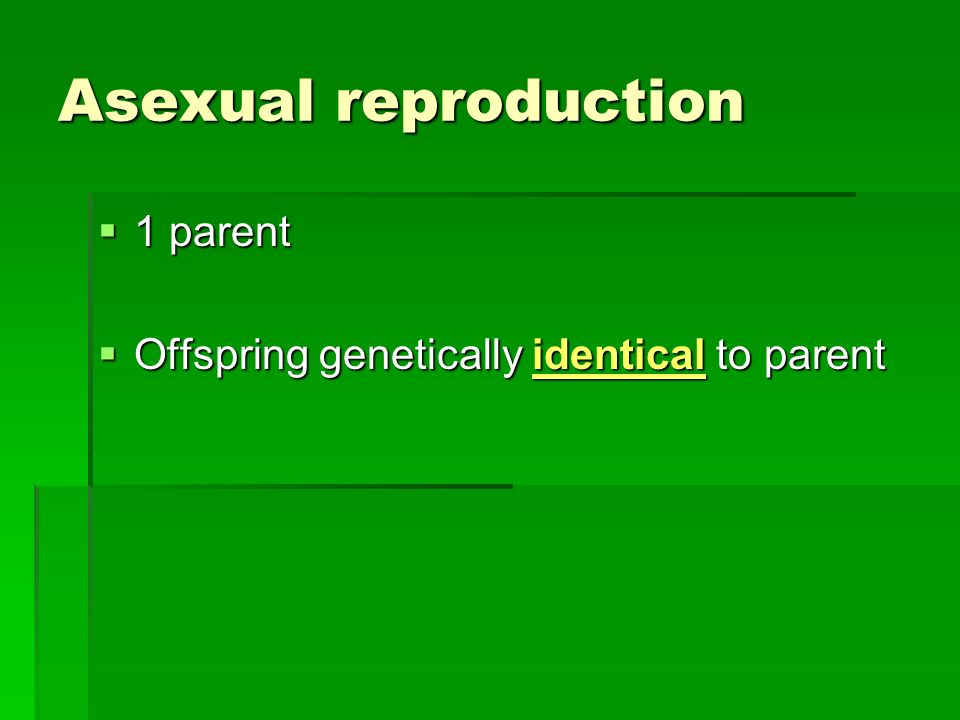 Asexual reproduction 1 parent 1 parent Offspring genetically identical to parent Offspring genetically identical to parent
