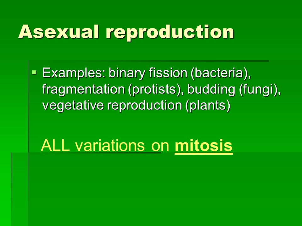 Asexual reproduction Examples: binary fission (bacteria), fragmentation (protists), budding (fungi), vegetative reproduction (plants) Examples: binary fission (bacteria), fragmentation (protists), budding (fungi), vegetative reproduction (plants) ALL variations on mitosis