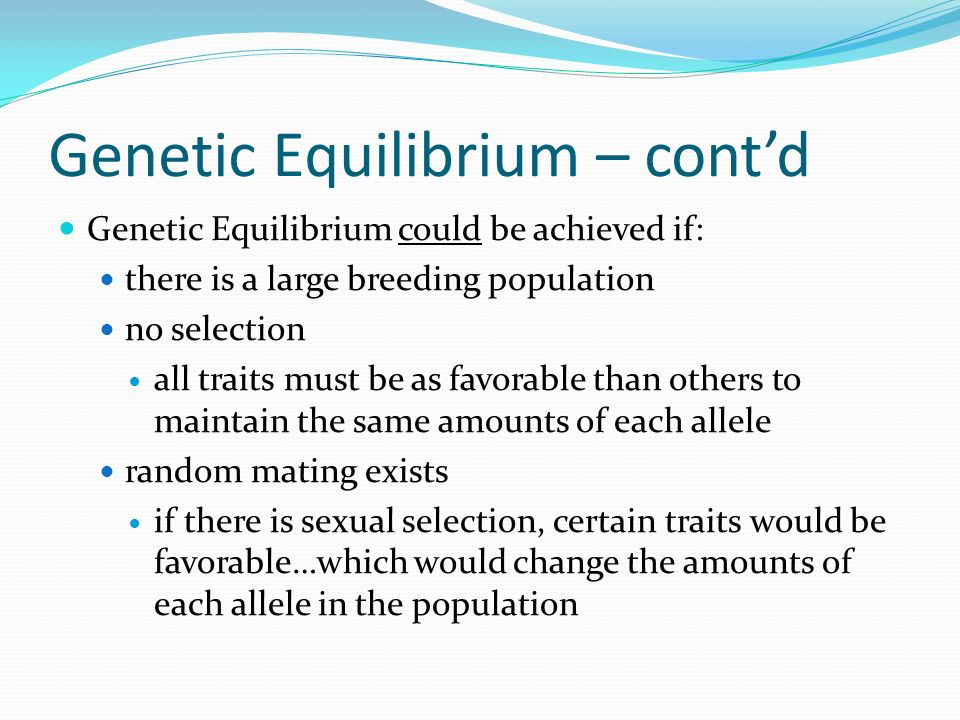 Genetic Equilibrium – contd Genetic Equilibrium could be achieved if: there is a large breeding population no selection all traits must be as favorable than others to maintain the same amounts of each allele random mating exists if there is sexual selection, certain traits would be favorable…which would change the amounts of each allele in the population
