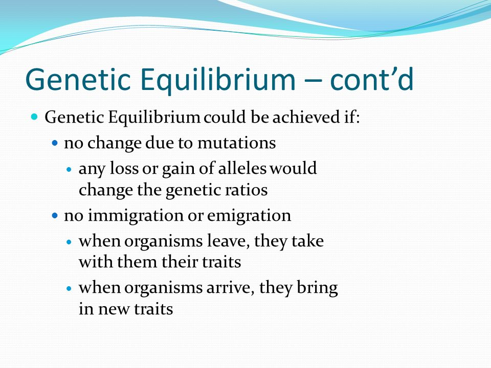 Genetic Equilibrium – contd Genetic Equilibrium could be achieved if: no change due to mutations any loss or gain of alleles would change the genetic ratios no immigration or emigration when organisms leave, they take with them their traits when organisms arrive, they bring in new traits