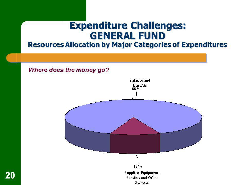 20 Expenditure Challenges: GENERAL FUND Resources Allocation by Major Categories of Expenditures Where does the money go