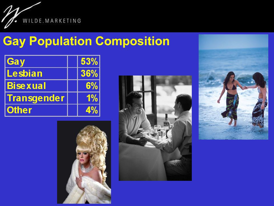 Gay Population Composition
