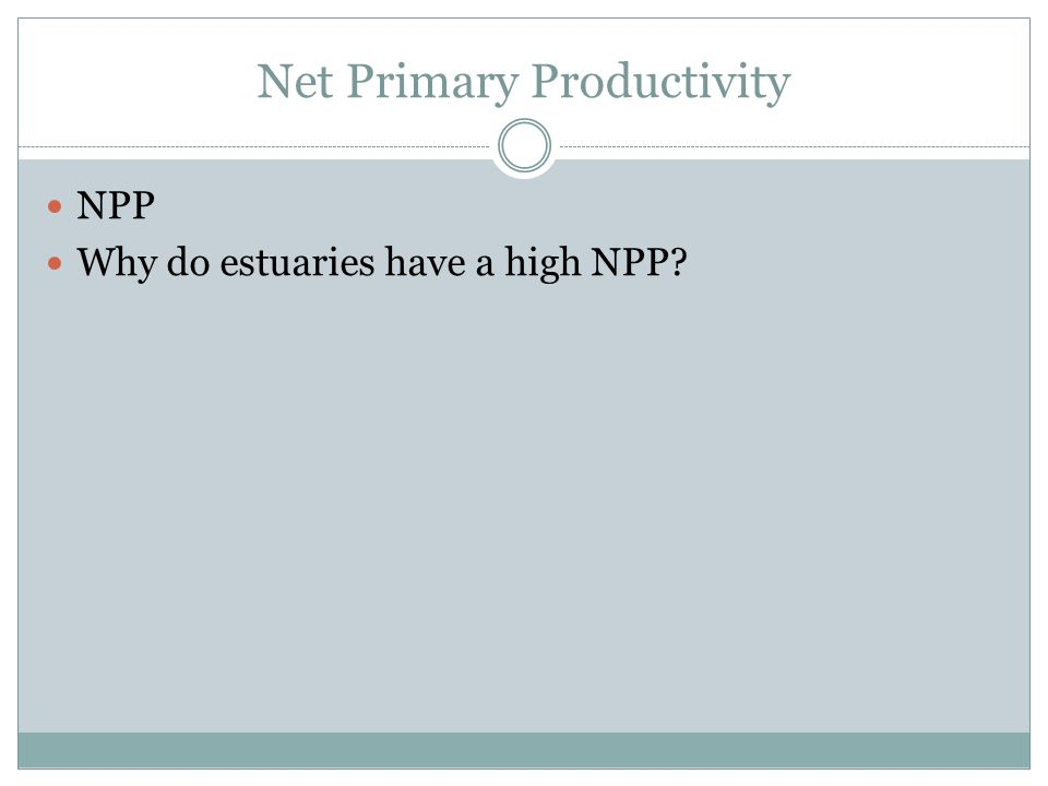Net Primary Productivity NPP Why do estuaries have a high NPP