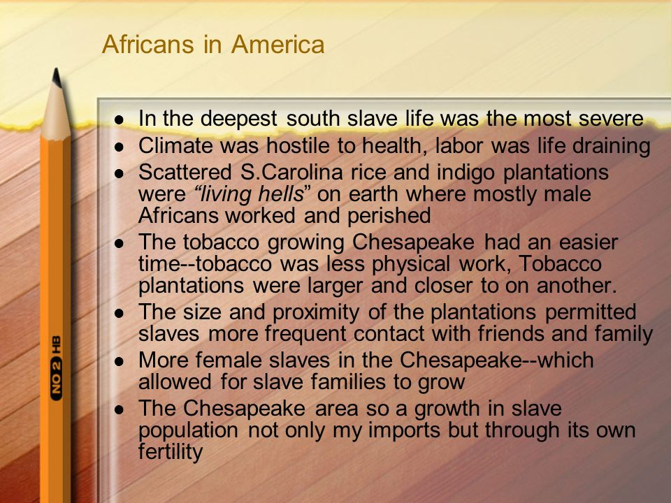 Africans in America In the deepest south slave life was the most severe Climate was hostile to health, labor was life draining Scattered S.Carolina rice and indigo plantations were living hells on earth where mostly male Africans worked and perished The tobacco growing Chesapeake had an easier time--tobacco was less physical work, Tobacco plantations were larger and closer to on another.