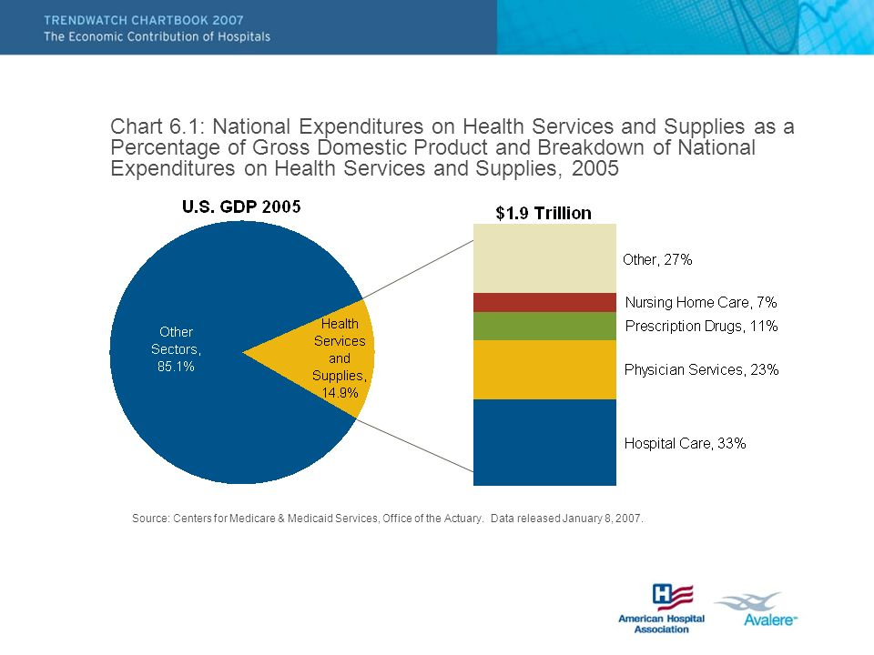Chart 6.1: National Expenditures on Health Services and Supplies as a Percentage of Gross Domestic Product and Breakdown of National Expenditures on Health Services and Supplies, 2005 Source: Centers for Medicare & Medicaid Services, Office of the Actuary.