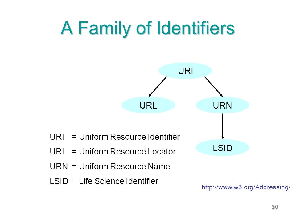 30 A Family of Identifiers URI = Uniform Resource Identifier URL = Uniform Resource Locator URN = Uniform Resource Name LSID = Life Science Identifier URI URLURN LSID URI= Uniform Resource Identifier URL= Uniform Resource Locator URN= Uniform Resource Name LSID= Life Science Identifier http://www.w3.org/Addressing/