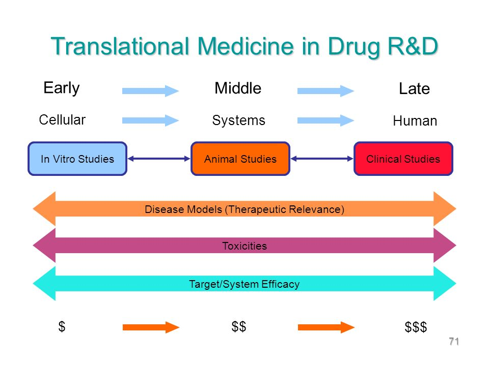 71 Translational Medicine in Drug R&D In Vitro StudiesAnimal StudiesClinical Studies Toxicities Target/System Efficacy Early Middle Late Cellular Systems Human Disease Models (Therapeutic Relevance) $ $$ $$$