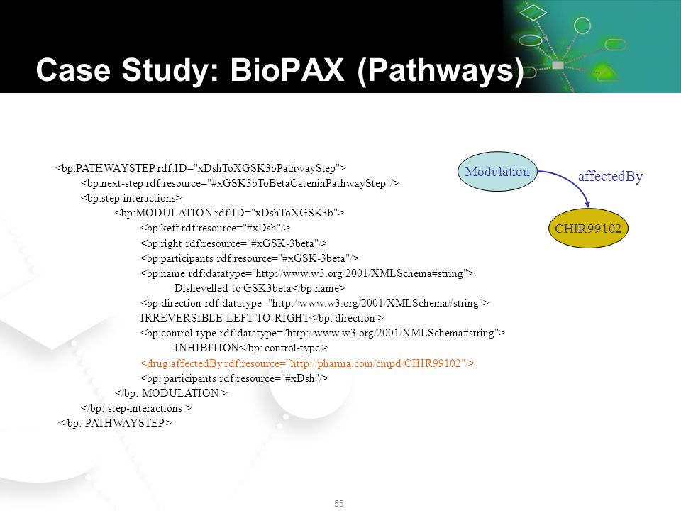 54 Dishevelled to GSK3beta IRREVERSIBLE-LEFT-TO-RIGHT INHIBITION Case Study: BioPAX (Pathways)