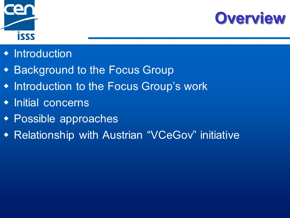 Overview Introduction Background to the Focus Group Introduction to the Focus Groups work Initial concerns Possible approaches Relationship with Austrian VCeGov initiative