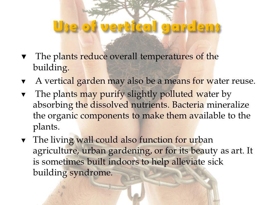 The plants reduce overall temperatures of the building.