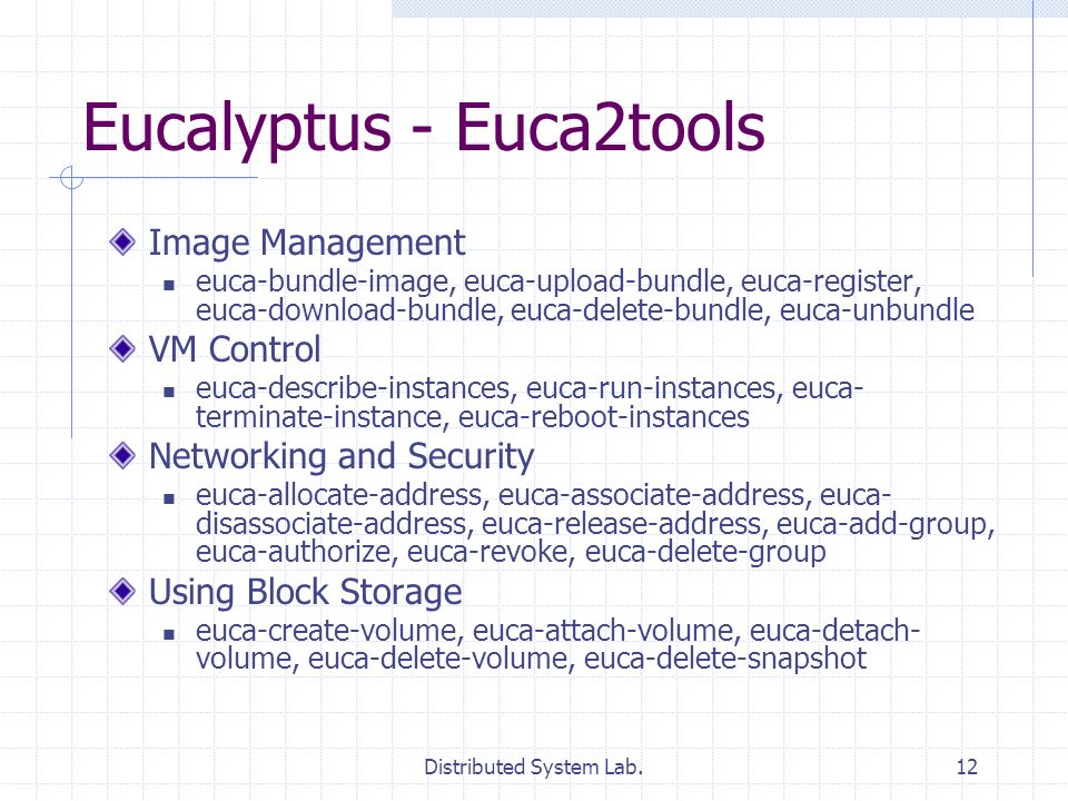Distributed System Lab.12 Eucalyptus - Euca2tools Image Management euca-bundle-image, euca-upload-bundle, euca-register, euca-download-bundle, euca-delete-bundle, euca-unbundle VM Control euca-describe-instances, euca-run-instances, euca- terminate-instance, euca-reboot-instances Networking and Security euca-allocate-address, euca-associate-address, euca- disassociate-address, euca-release-address, euca-add-group, euca-authorize, euca-revoke, euca-delete-group Using Block Storage euca-create-volume, euca-attach-volume, euca-detach- volume, euca-delete-volume, euca-delete-snapshot