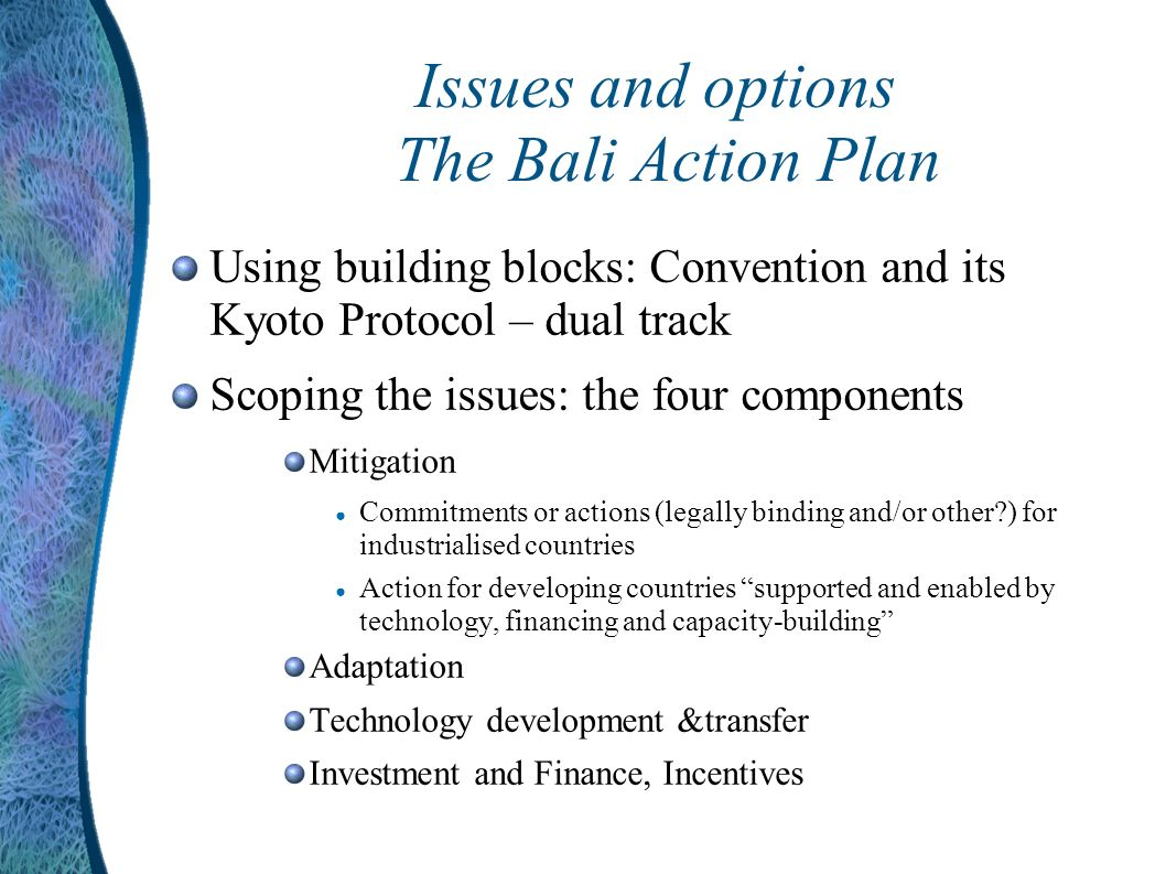 Issues and options The Bali Action Plan Using building blocks: Convention and its Kyoto Protocol – dual track Scoping the issues: the four components Mitigation Commitments or actions (legally binding and/or other ) for industrialised countries Action for developing countries supported and enabled by technology, financing and capacity-building Adaptation Technology development &transfer Investment and Finance, Incentives