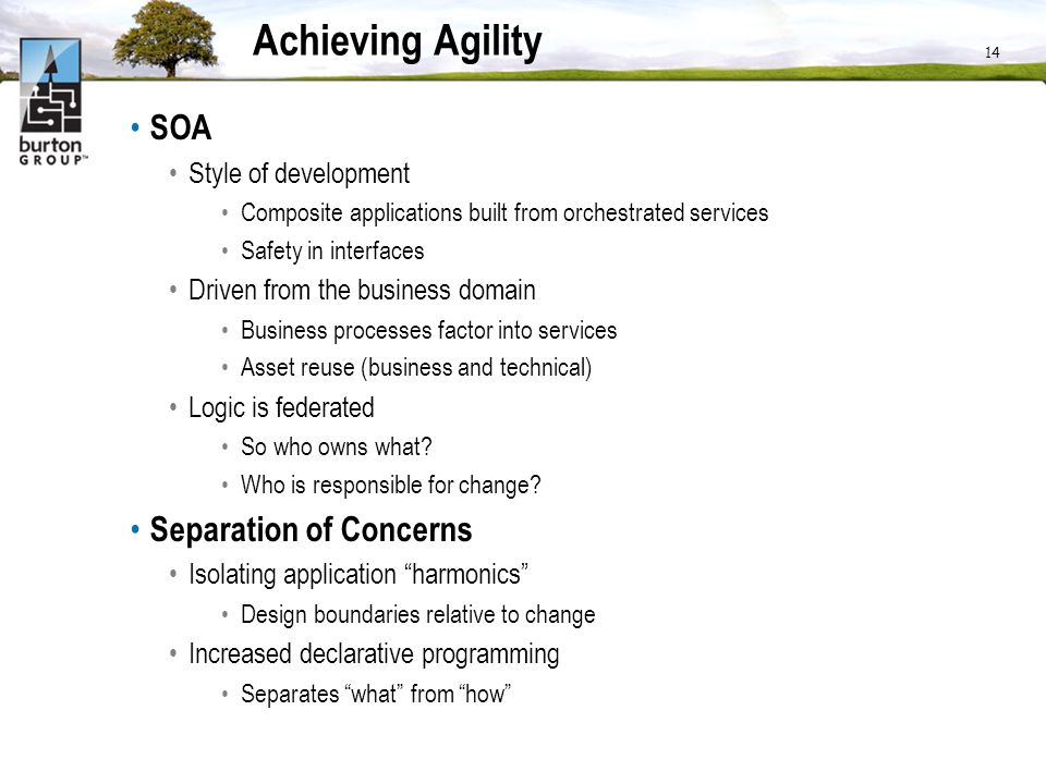Achieving Agility SOA Style of development Composite applications built from orchestrated services Safety in interfaces Driven from the business domain Business processes factor into services Asset reuse (business and technical) Logic is federated So who owns what.