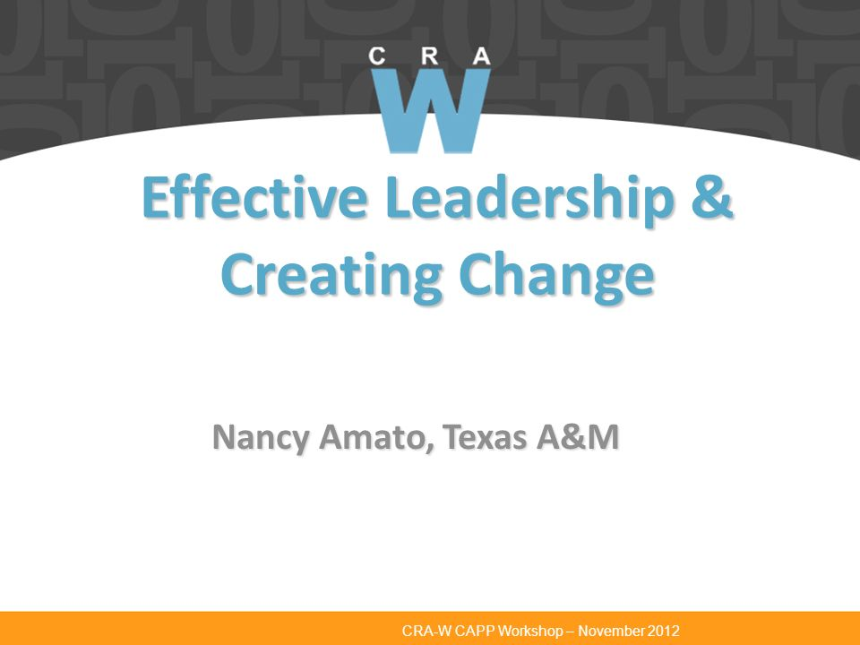 CRA-W CAPP Workshop – November 2012 Effective Leadership & Creating Change Nancy Amato, Texas A&M