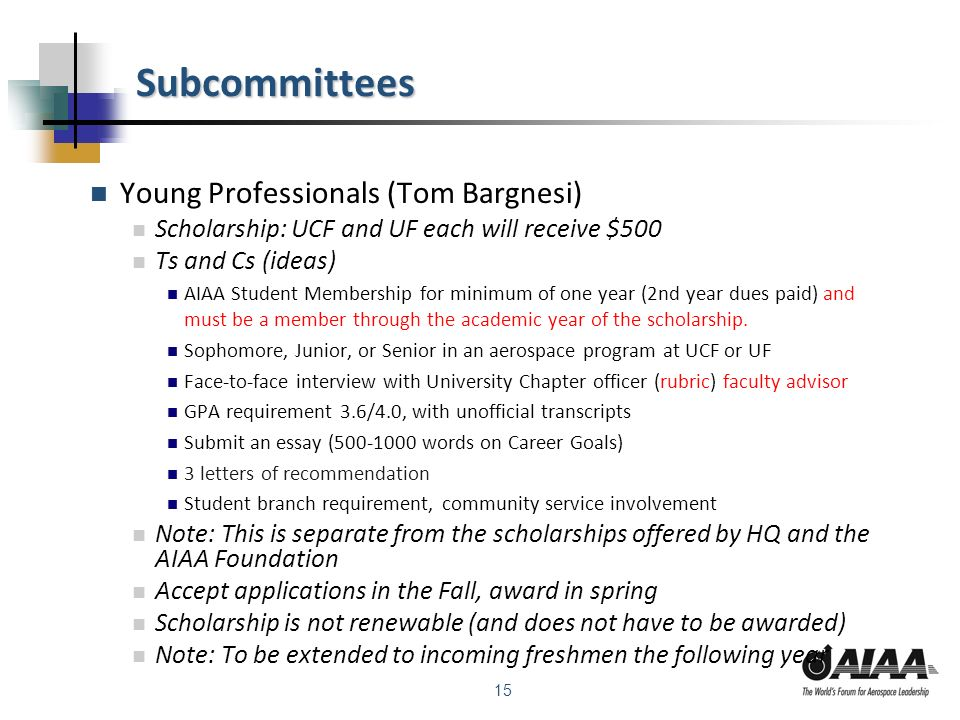 15 Subcommittees Young Professionals (Tom Bargnesi) Scholarship: UCF and UF each will receive $500 Ts and Cs (ideas) AIAA Student Membership for minimum of one year (2nd year dues paid) and must be a member through the academic year of the scholarship.
