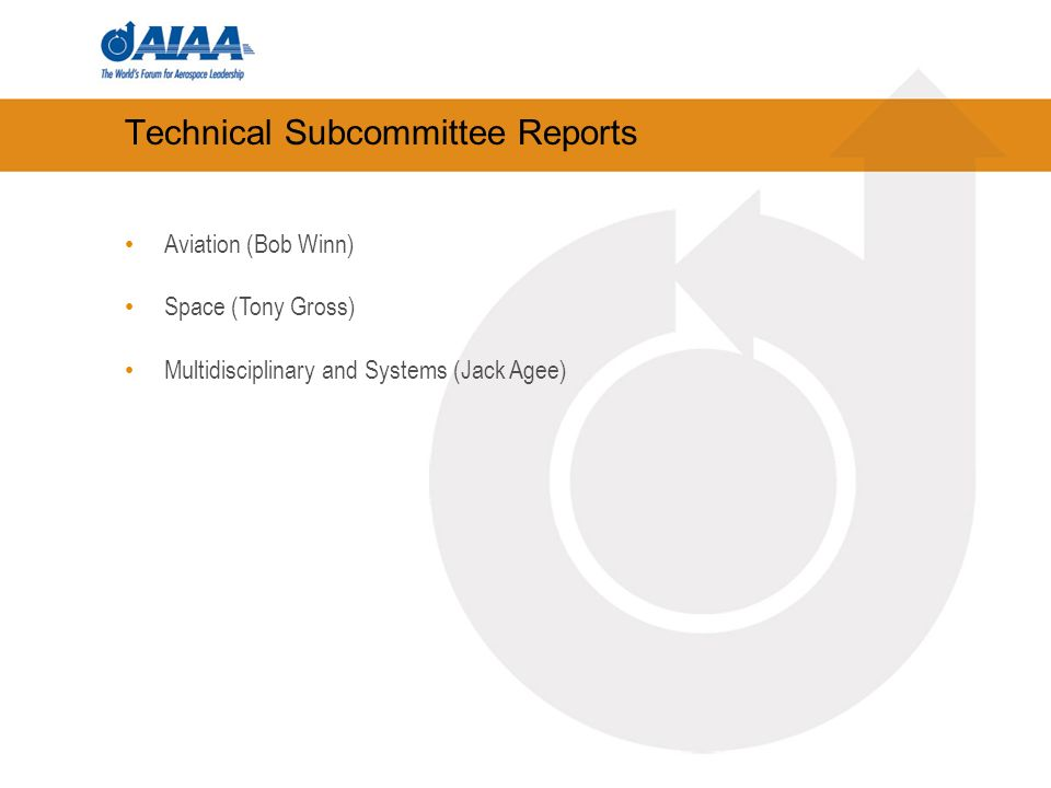Technical Subcommittee Reports Aviation (Bob Winn) Space (Tony Gross) Multidisciplinary and Systems (Jack Agee)